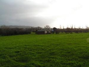 Top Meadow