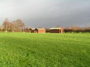 Bottom Meadow